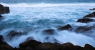 snapper rocks half cropped