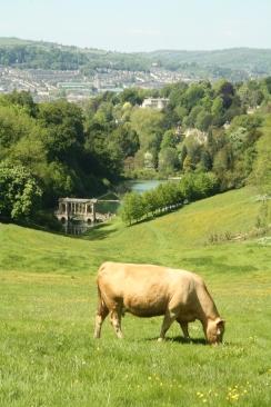 Prior Park Bridge