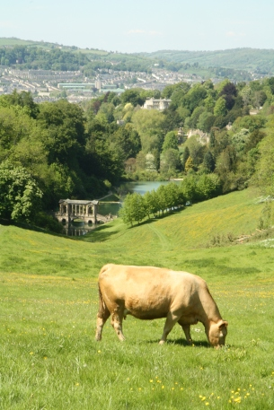 Prior Park Bridge