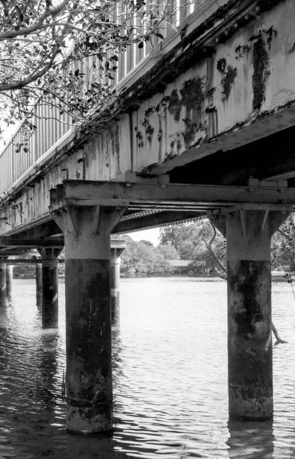 Pedestrian Bridge Currumbin Creek Australia