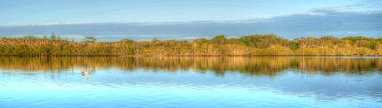 cropped-tweed-river-hdr.jpg