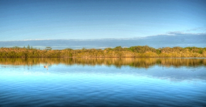 Tweed River NSW