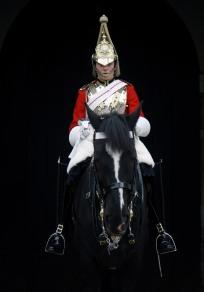 Guard Duty