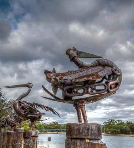 Rusty Pelicans Currumbin Creek