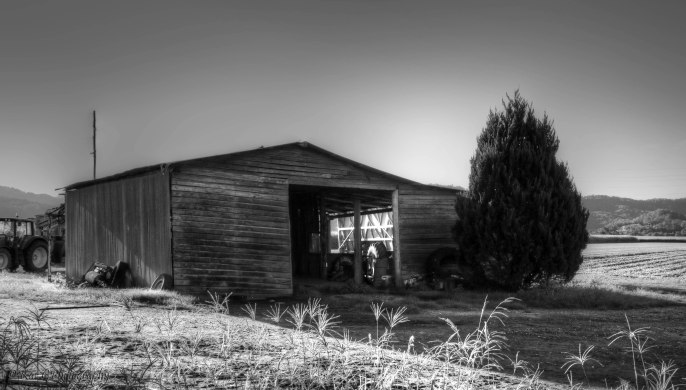 Old shed Murwillumbah