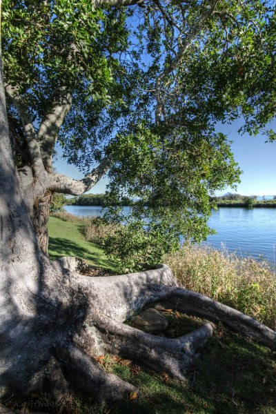 Looking West - Tweed River