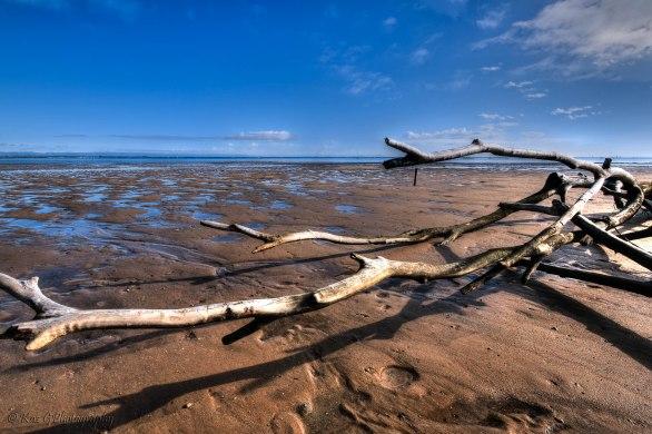 scarborough mudflats