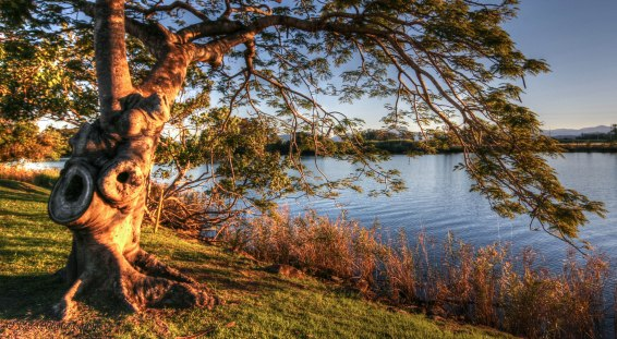 Tweed River Tumbulgum