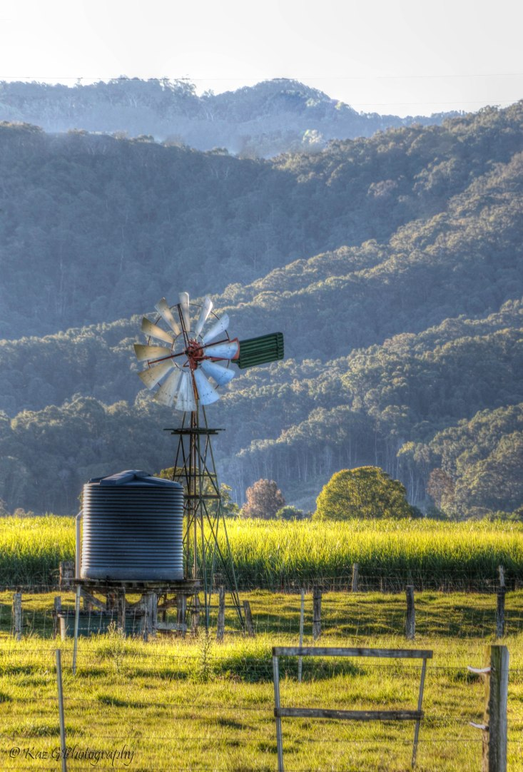 Windmill Murwillumbah