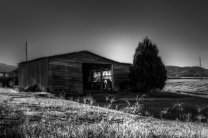 old shed-3