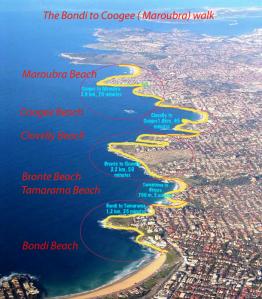 bondi-map