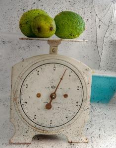 kitchen scales 4