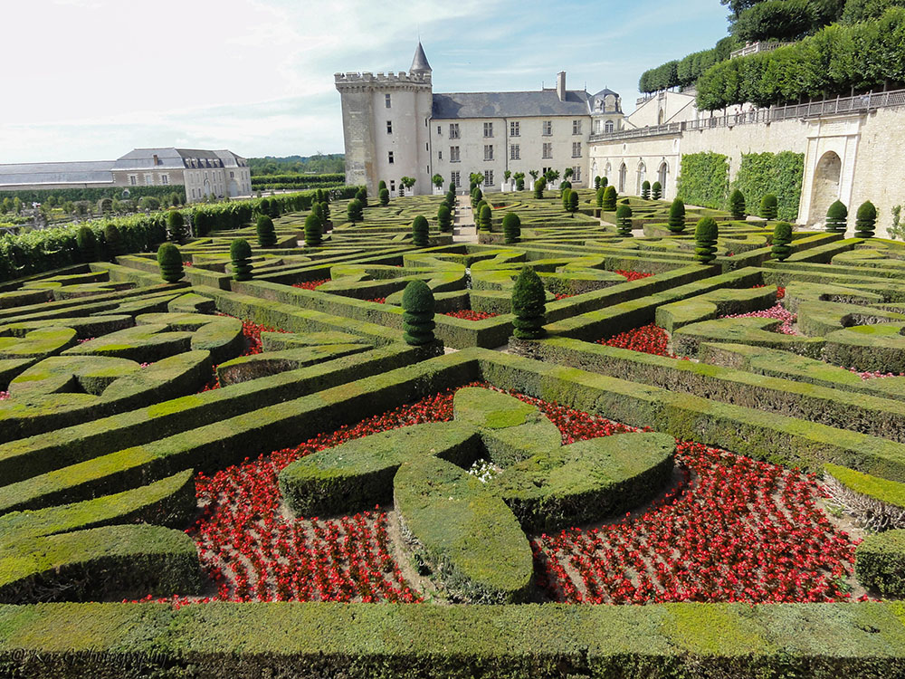 Sunday Stills The next challenge:  Flower Gardens – Villandry Chateau