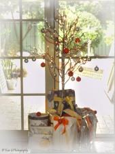 christmas-orange4