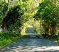 road-to-duranbah2