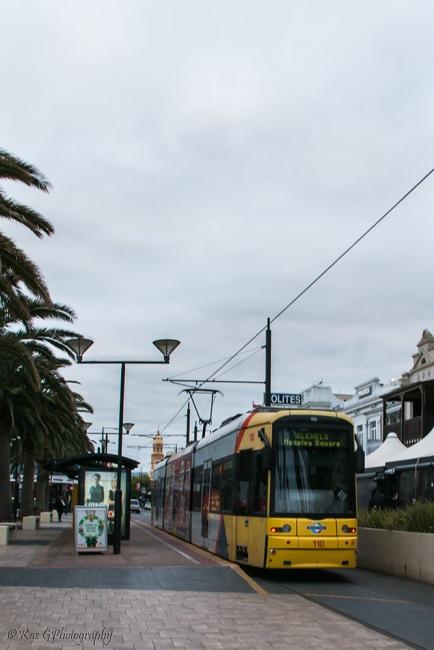 Glenelg-tram