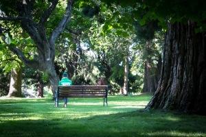 solitude-park