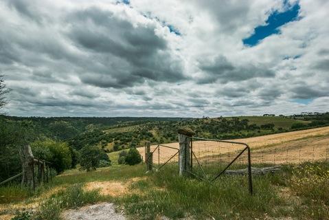 view-from-ridge-mclaren-vale