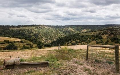 view-mclaren-vale