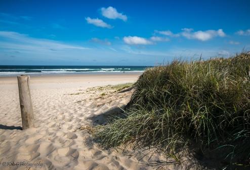 Shelly Beach Ballina1