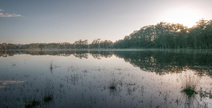 wetlands2