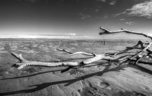 Recliffe Mudflats