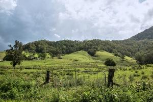 rolling hills Lions Road