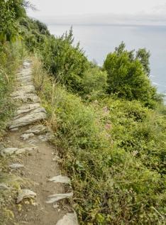 narrow pathway