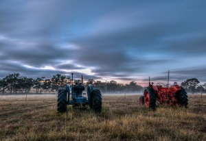 tractors in the mist 2