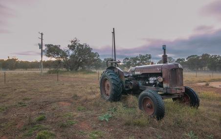tractors in the mist 6