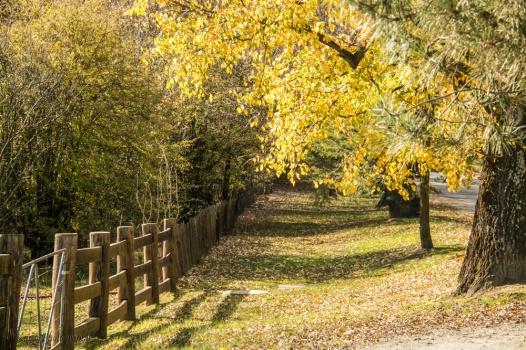 autumn-hill-end-1