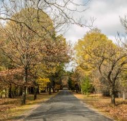 Hill End laneway-1