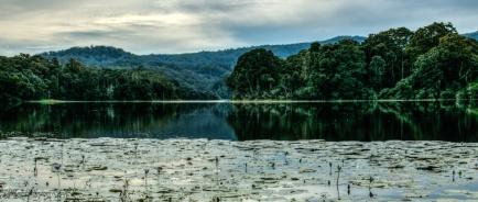 Rocky-creek-dam