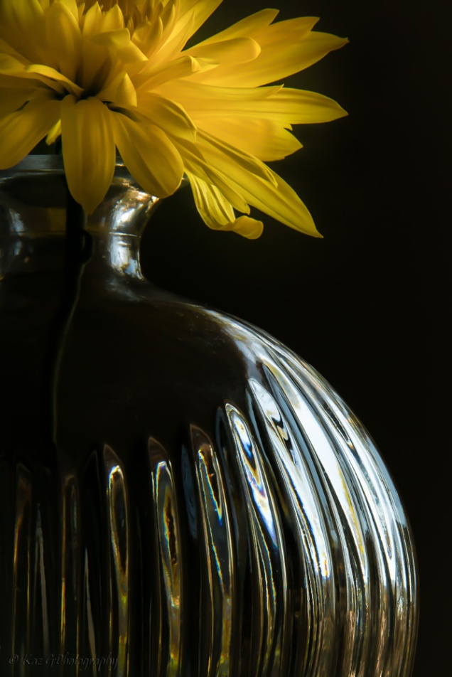 study of a yellow flower