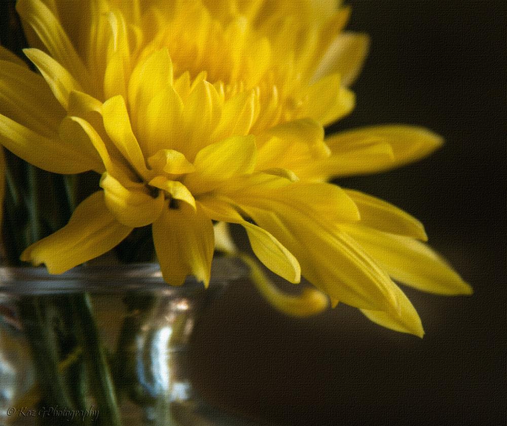 Study of a yellow flower inlinen