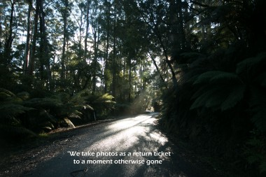 road-of-mystery-quote