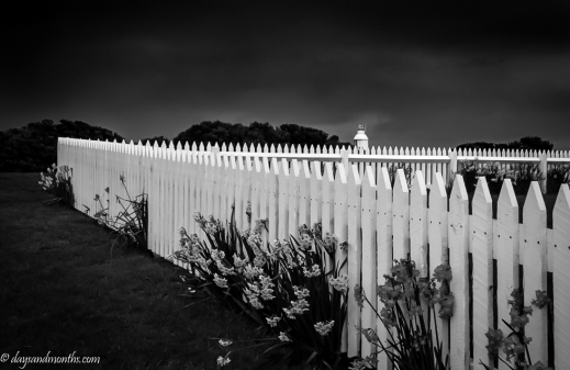 Cape Otway picket fence (1 of 1)