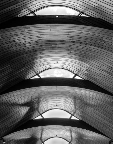 wood-ceiling-1