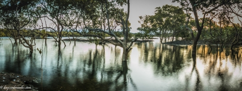 Cudgen creek pano (1 of 1)-2