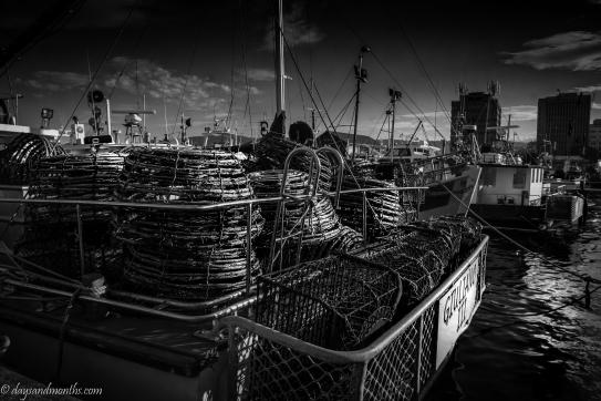 Hobart crab pots
