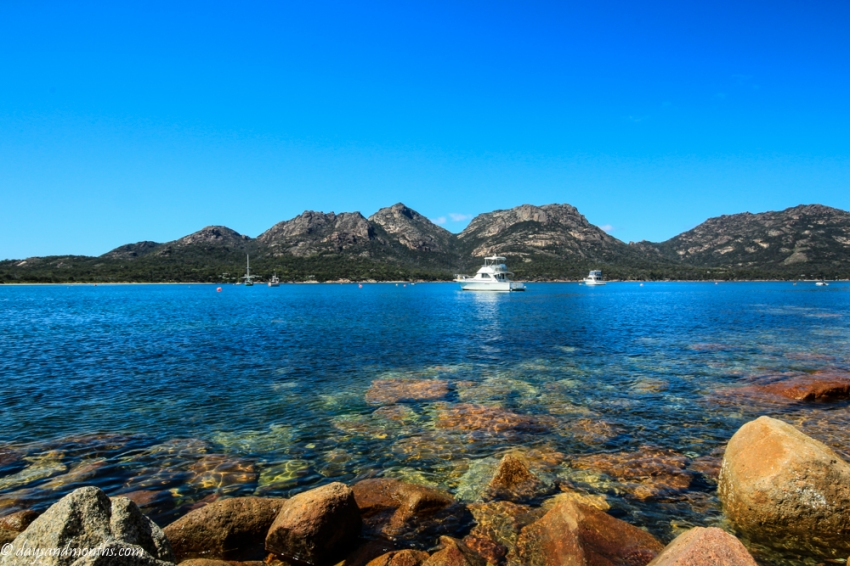 freycinetnationalpark8 (1 of 1)