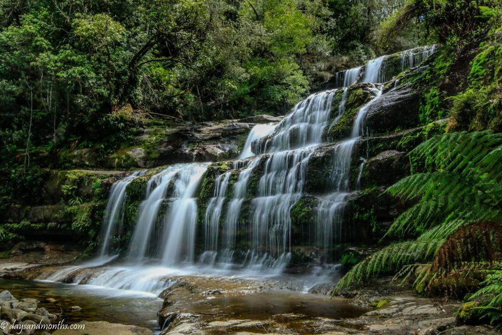 Liffey Falls |Tasmania