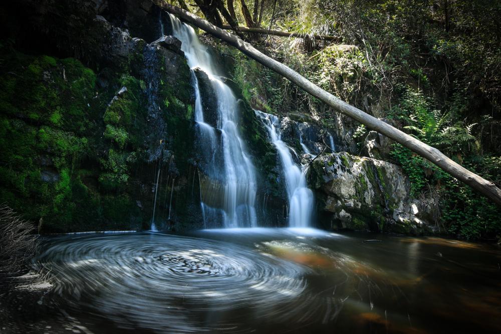 Lilydale Falls Tasmania-