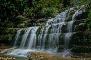 Liffey Falls2-