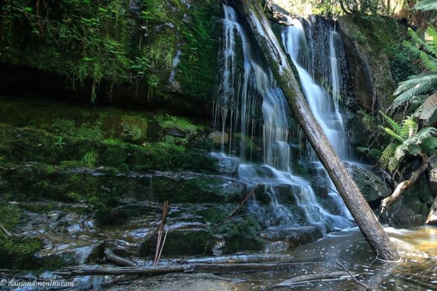 lilydale falls 2-